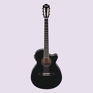 Electric Acoustic Guitars